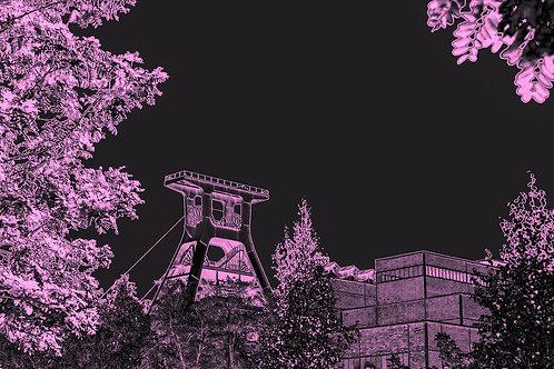 Zollverein Pink