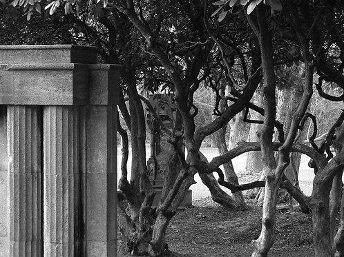 Alter Friedhof  Essen Segeroth
