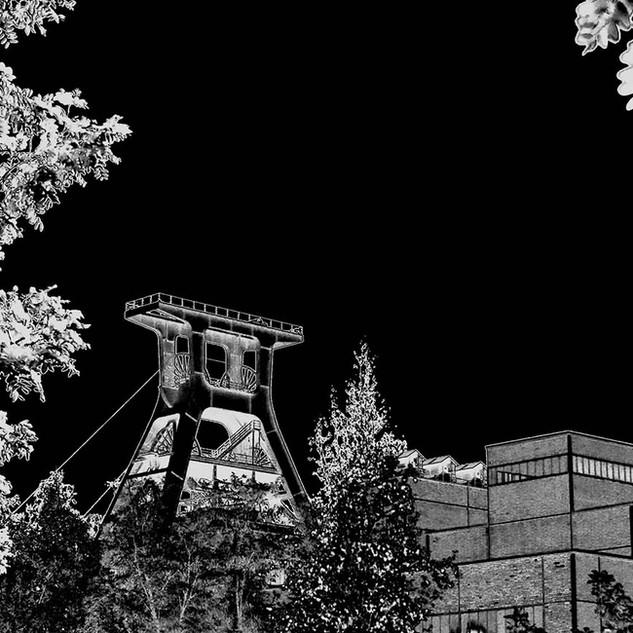 Zollverein Natur u XII sw ed.jpg