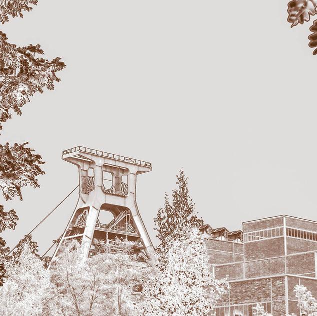 Zollverein Natur Schacht XII.jpg