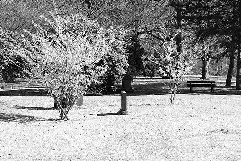 Essen Segeroth Friedhof