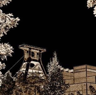 Zollverein Natur u XII bw ediet.jpg