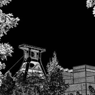 Zollverein Natur u XII sw.jpg