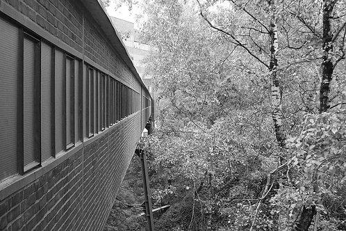 Zollverein Laufband im Zechenwald
