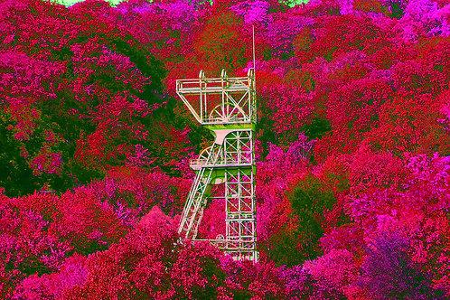 Zeche Carl Funke pink wood
