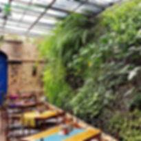 jardin-vertical-guatemala-restaurante-ha