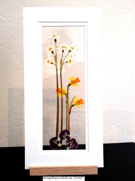 Spring flower 18X36 cm ($25.00).jpg