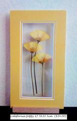 CA poppy trio 17.5X32.00 cm ($24.00) - C