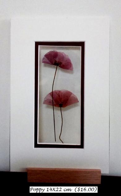 poppy 14X22 cm  ($16.00) - Copy.jpg