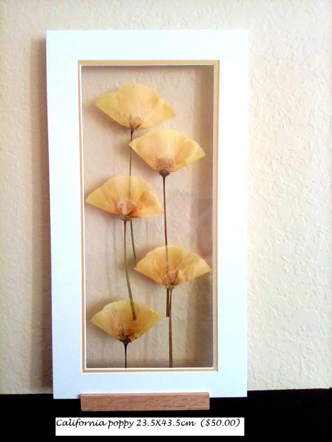 CA poppy tall 23.5X43.5 cm ($50.00).jpg