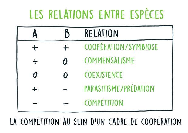 relation-entre-especes-vert.jpg