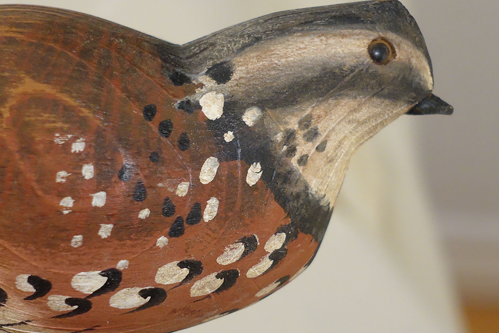 LovelyCarved head Quail