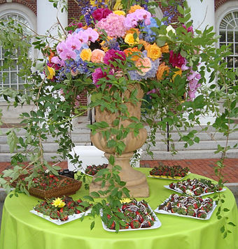Event Planning, Party Planning, Wedding Planner, Bar Mitzvah planner, Bat Mitzvah Planner, MA