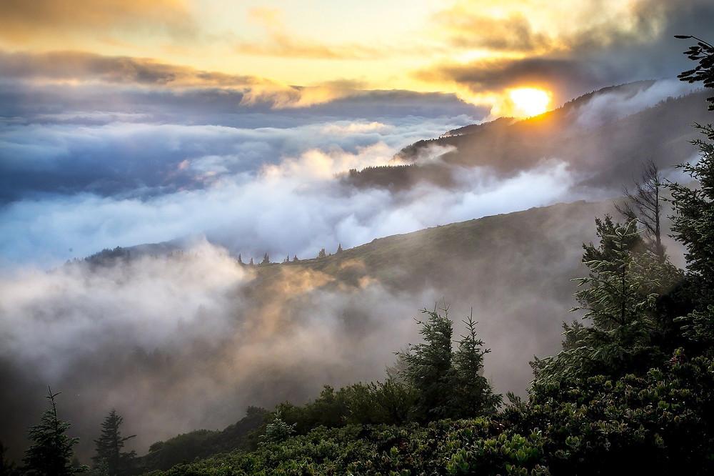 Berge im Nebel, Wolken, Himmel, Sonne, Bäume, mystische Landschaft
