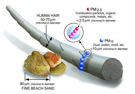 Size comparisons for PM particles