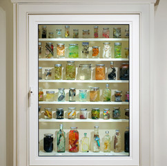 Cabinet of jars from installation
