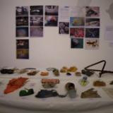 Plastic artifacts from N. Atlantic seabed