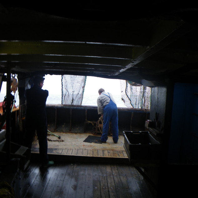 ... started filming the haul on the top deck until I saw the suffering....the gasping for breath of so many hundreds of fish