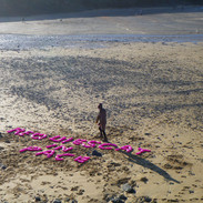 It was estimated that 4,500 neon bottles of Vanish, out of the 18,720 that went missing, washed up on Poldhu Cove on the Lizard on Sunday 5th January 2016...