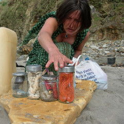 gathering a myriad of plastic objects strewn across the sand...