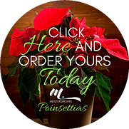 POINSETTIAS BUTTON.png