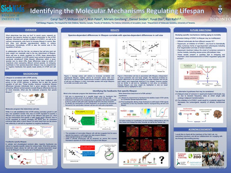 Lifespan Poster Wins Competition at Cell Biology Retreat