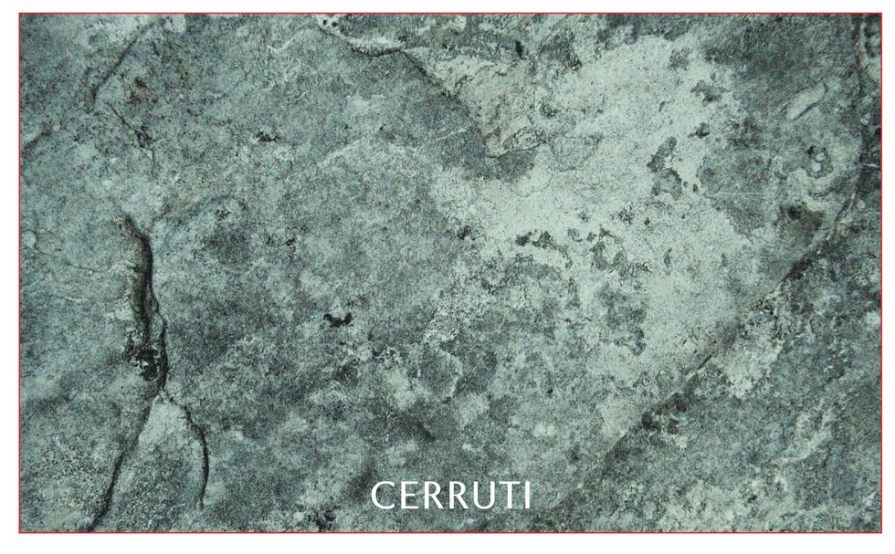 Cerruti1881 3