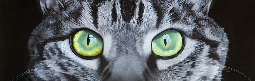 'Eye-scape'