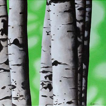 'Birch Trees 2'