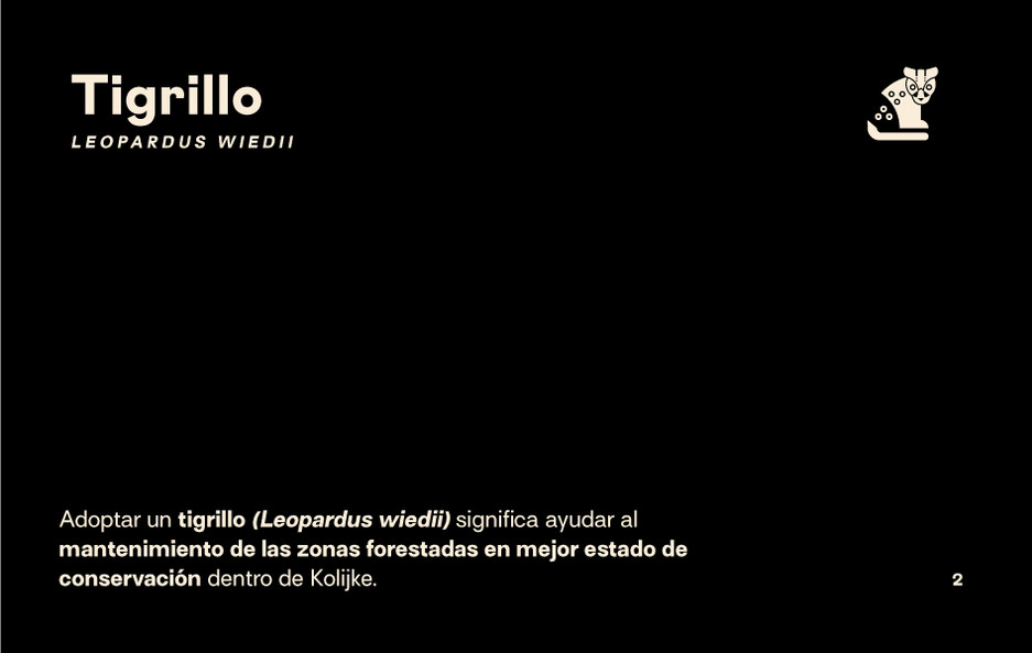 Presentacion_Tigrillo_1.jpg
