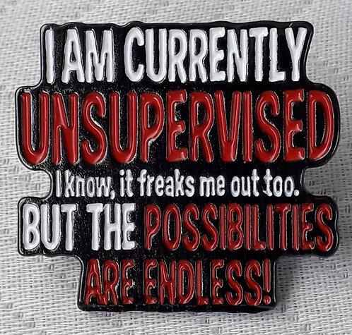 I Am Currently Unsupervised...