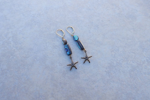 Starfish and Double Abalone