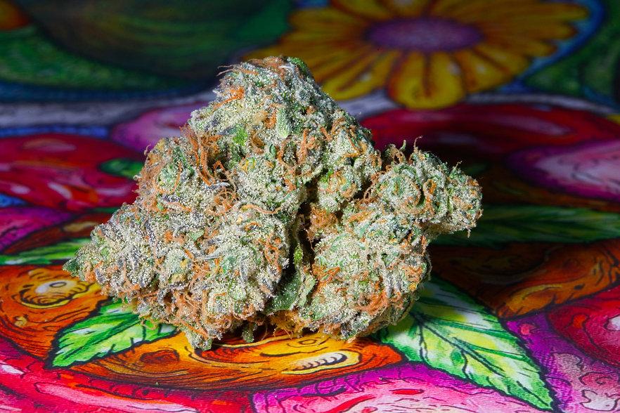 Grizz Cannabis.jpg