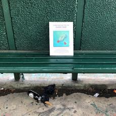 Plastic Catch No 19 in situ 1-sm.jpg