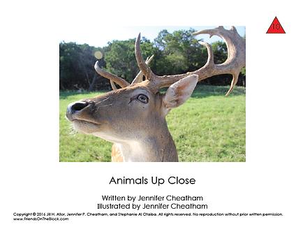 10 animals up close-01.png