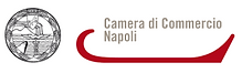 camera di commercio napoli.PNG