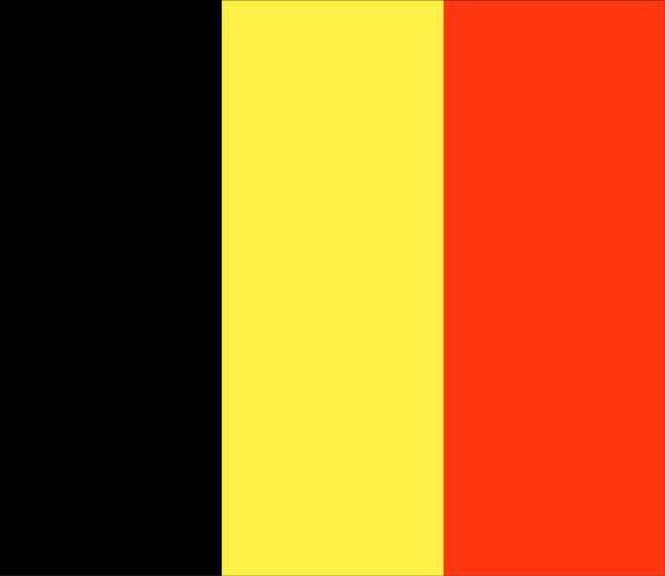 Belgium - Taking part in April 4 World Stray Animals Day.jpg