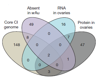 Prophage WO genes recapitulate and enhance Wolbachia-induced cytoplasmic incompatibility
