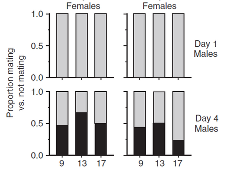 Male aggression, limited female choice and the ontogeny of mating behaviour in the flesh fly...