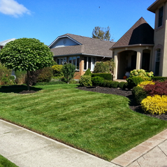 Lawn and Garden (1).png