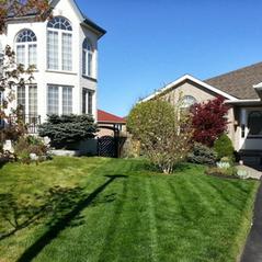 Lawn comparison