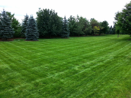 Is a lawn cutting program right for you?