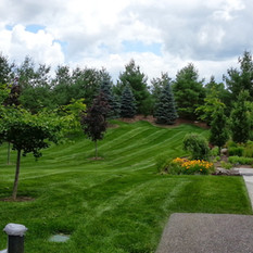 Large lawn just cut
