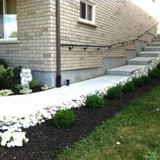 Garden by walkway