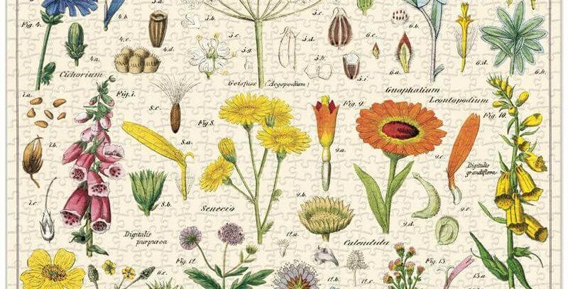 Cavallini & Co - Wildflowers 1000 Pce - Vintage Puzzle