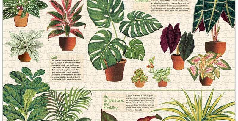 Cavallini & Co - House Plants 1000 Pce - Vintage Puzzle