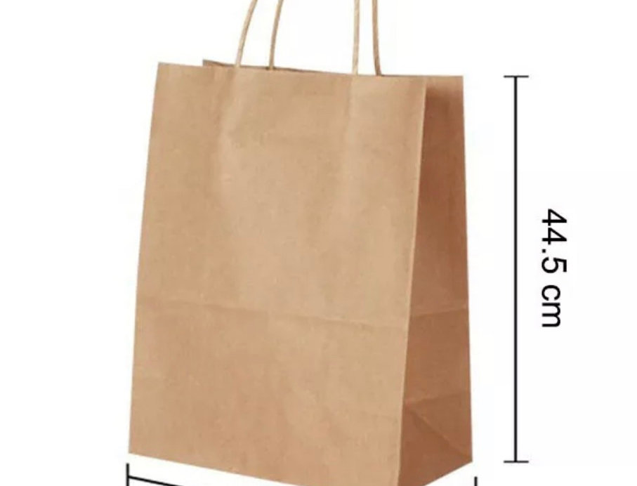Eco Friendly Brown Twist Handle Paper Carrier Bag