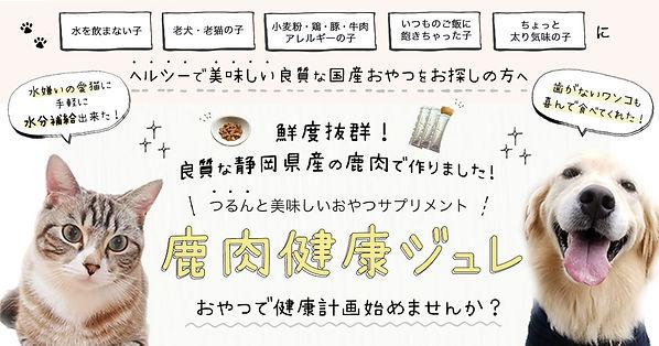 OGP_img.jpg