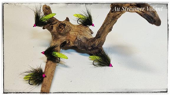 Insecte Hybride