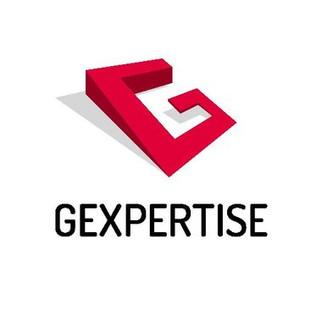 Logo Gexpertise.jpg